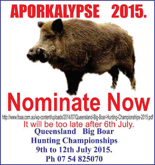 Big Boar 2015 Aporkalypse Tiny