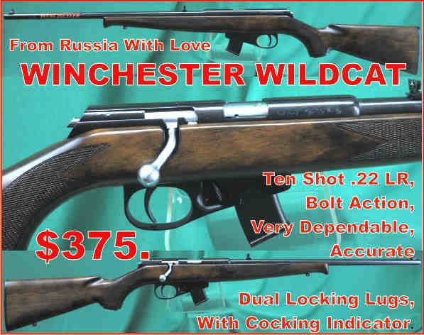 WinchesterWildTINYCat