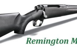 Remington Bolt action .243win detachable magazine blue action plastic stock $ 699.00