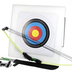 Chameleon green 10-15lbs compound bow with target and 2 arrows $ 110.00