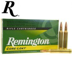 Remington 243win 100Gr PSP Pack of 20 $ 34.90
