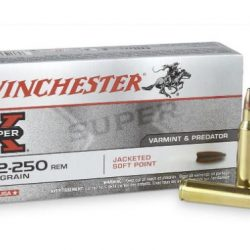 Winchester 22-250 Rem PSP Pack of 20 $ 40.00