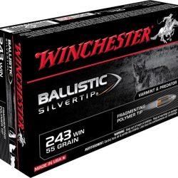 Winchester 243 55 grain silver ballistic tip Box of 20 $ 38.50